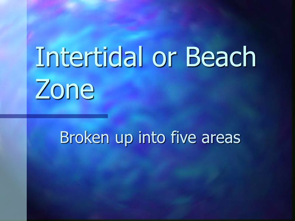 Intertidal or Beach Zone Broken up into five areas