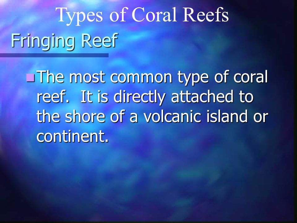Fringing Reef The most common type of coral reef. It is directly attached to the shore of a volcanic island or continent. The most common type of cora