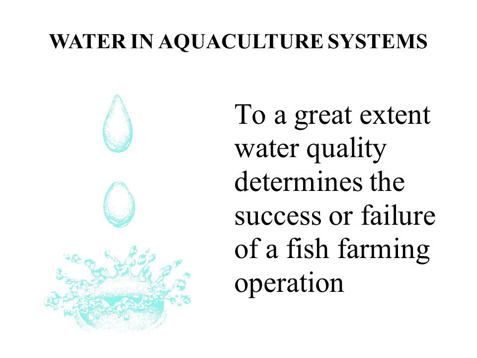 To a great extent water quality determines the success or failure of a fish farming operation WATER IN AQUACULTURE SYSTEMS