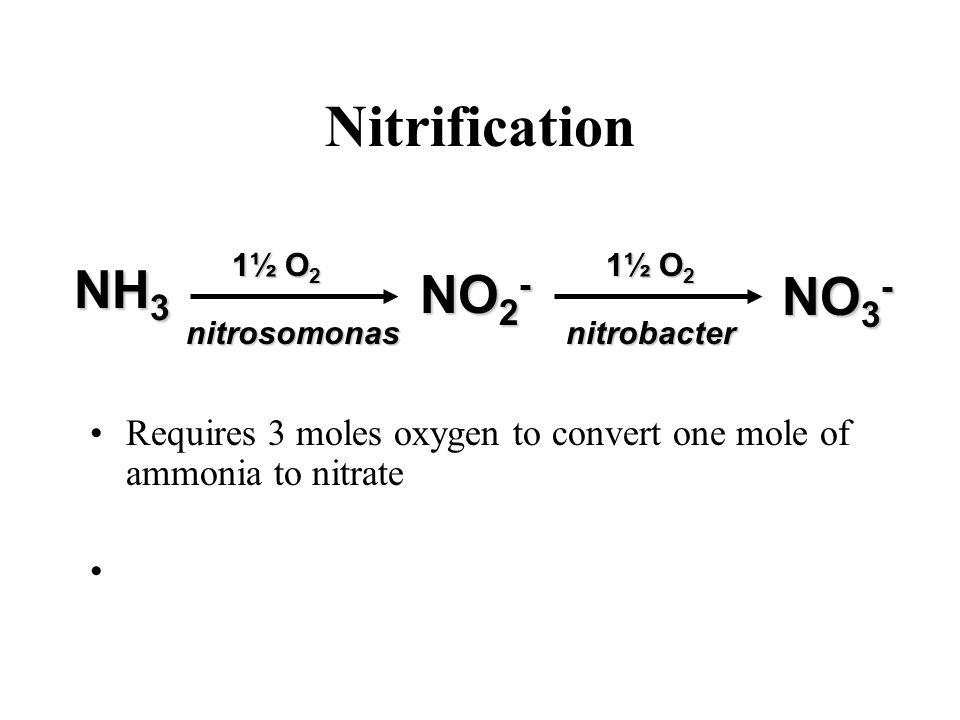 Nitrification NO 3 - NH 3 1½ O 2 nitrosomonasnitrobacter NO 2 - Requires 3 moles oxygen to convert one mole of ammonia to nitrate