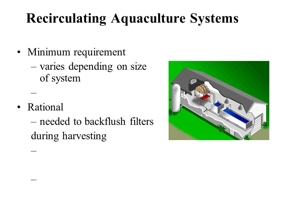 Recirculating Aquaculture Systems Minimum requirement –varies depending on size of system – Rational –needed to backflush filters during harvesting –