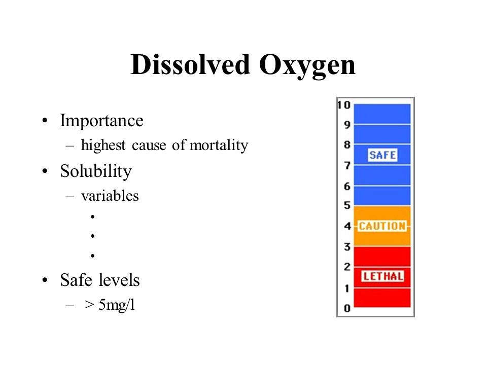7 6 5 4 3 2 1 0 5 pm10 pm5 am Measured values Projected values mg/l Projected Dissolved Oxygen Levels for Ponds