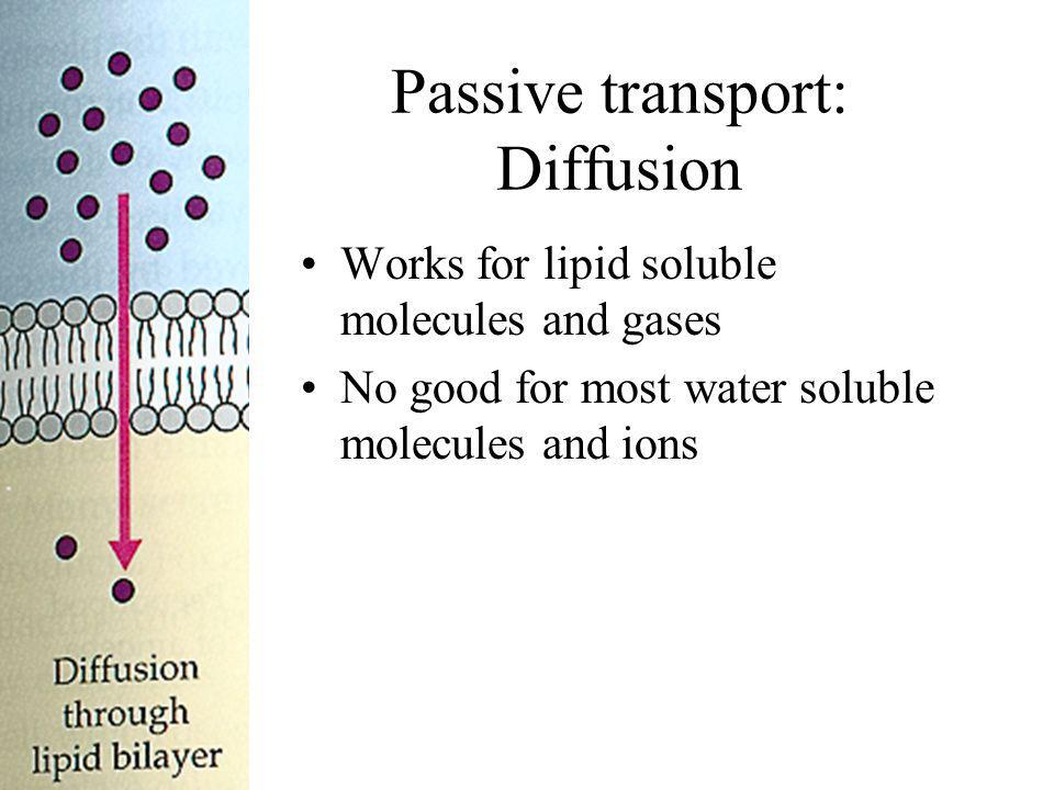 Passive transport: Diffusion Works for lipid soluble molecules and gases No good for most water soluble molecules and ions