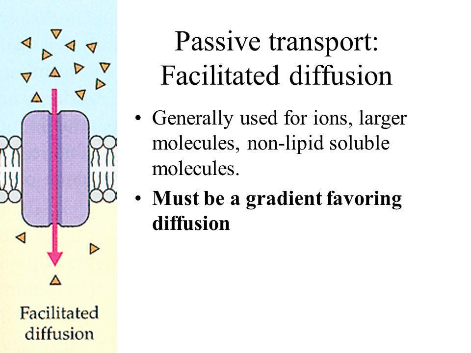 Passive transport: Facilitated diffusion Generally used for ions, larger molecules, non-lipid soluble molecules. Must be a gradient favoring diffusion