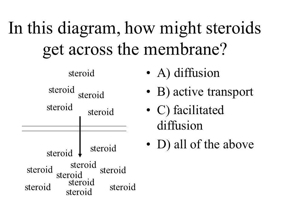 In this diagram, how might steroids get across the membrane? A) diffusion B) active transport C) facilitated diffusion D) all of the above steroid