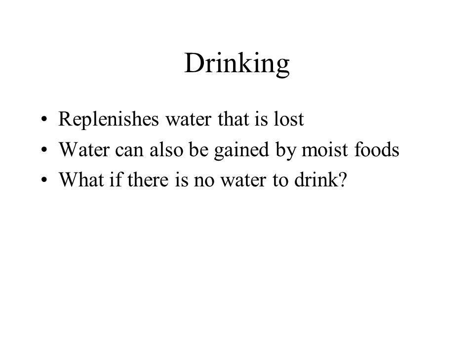 Drinking Replenishes water that is lost Water can also be gained by moist foods What if there is no water to drink?