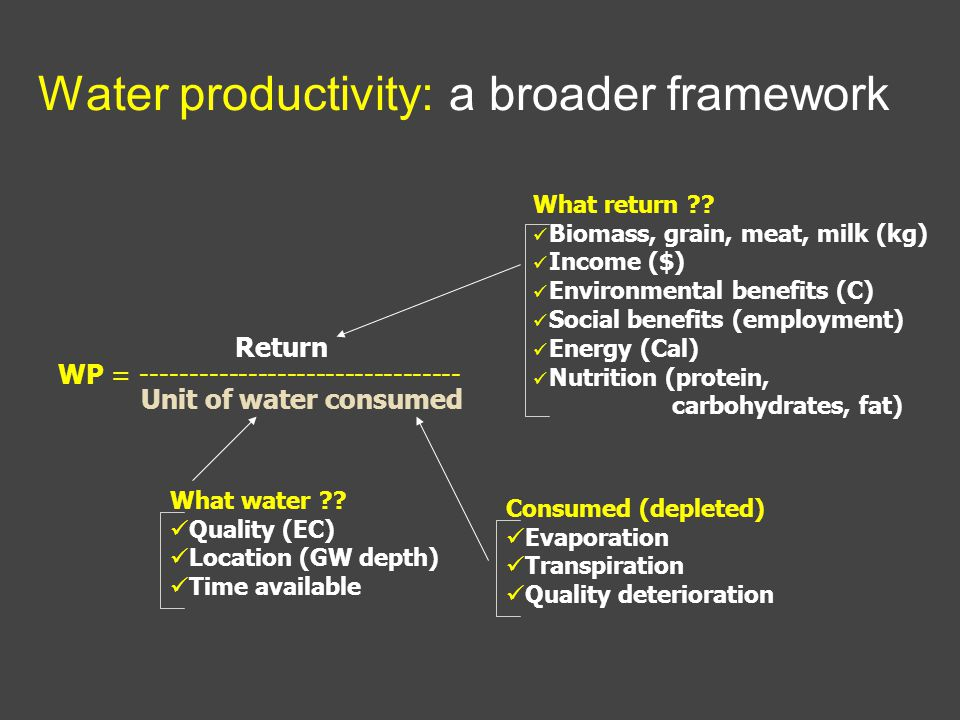 Water productivity: a broader framework Return WP = --------------------------------- Unit of water consumed What return .