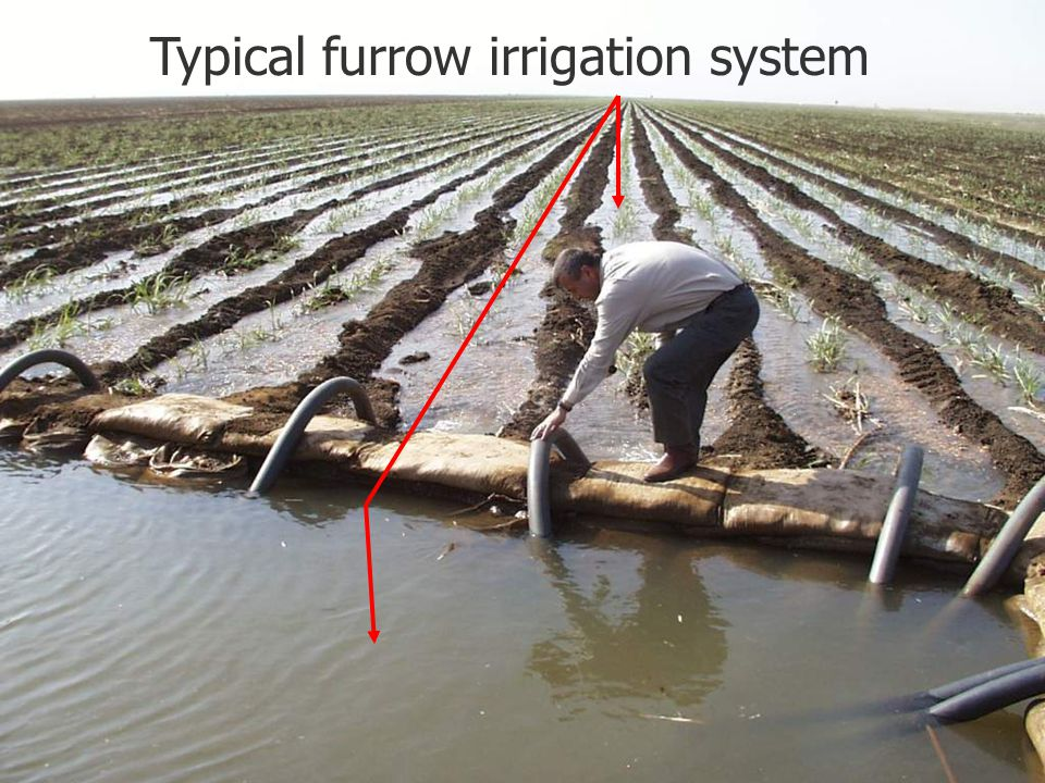 Typical furrow irrigation system
