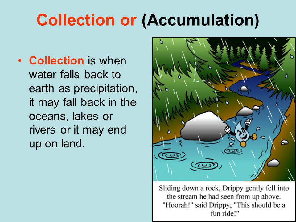 Collection or (Accumulation) Collection is when water falls back to earth as precipitation, it may fall back in the oceans, lakes or rivers or it may