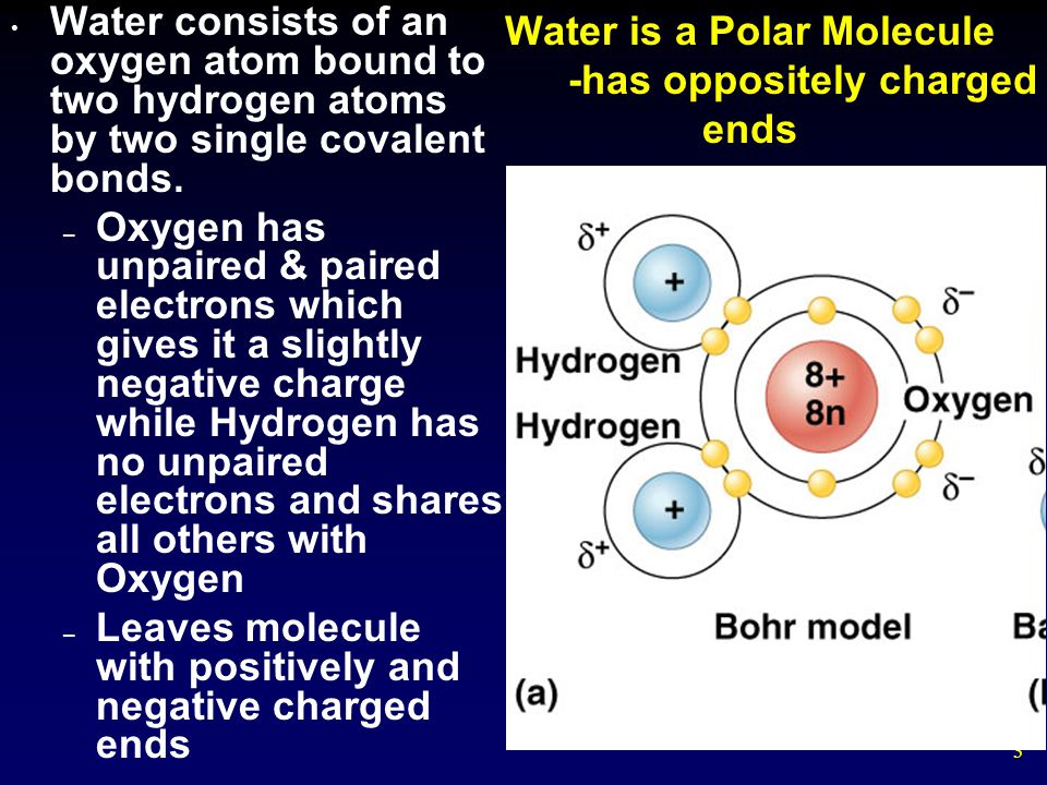 14 Universal Solvent A liquid that is a completely homogeneous mixture of two or more substances is called a solution.