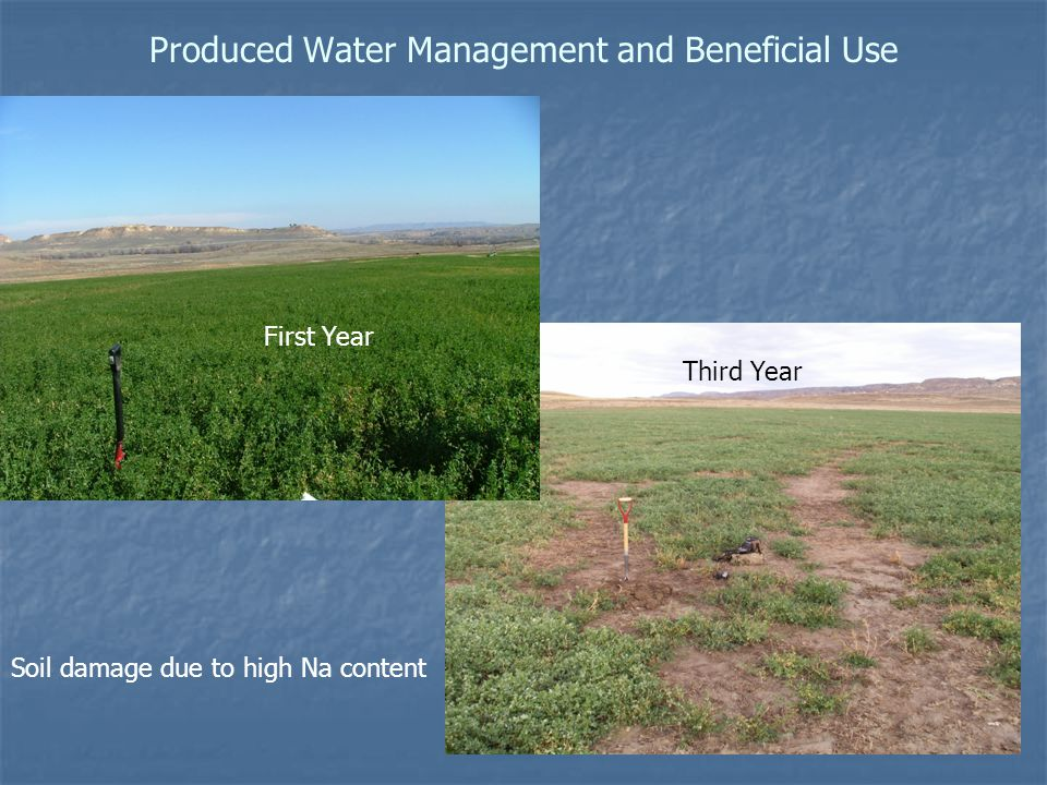 Produced Water Management and Beneficial Use First Year Third Year Soil damage due to high Na content