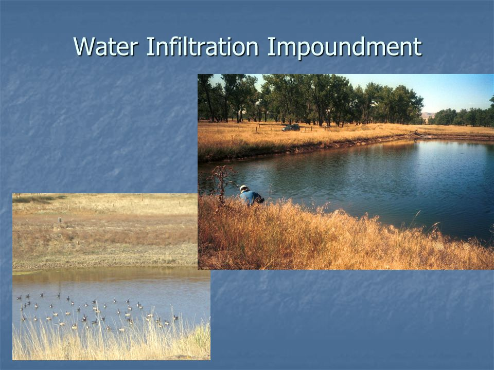 Water Infiltration Impoundment