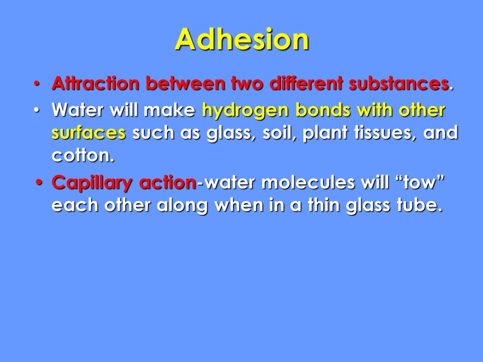 Adhesion Attraction between two different substances.