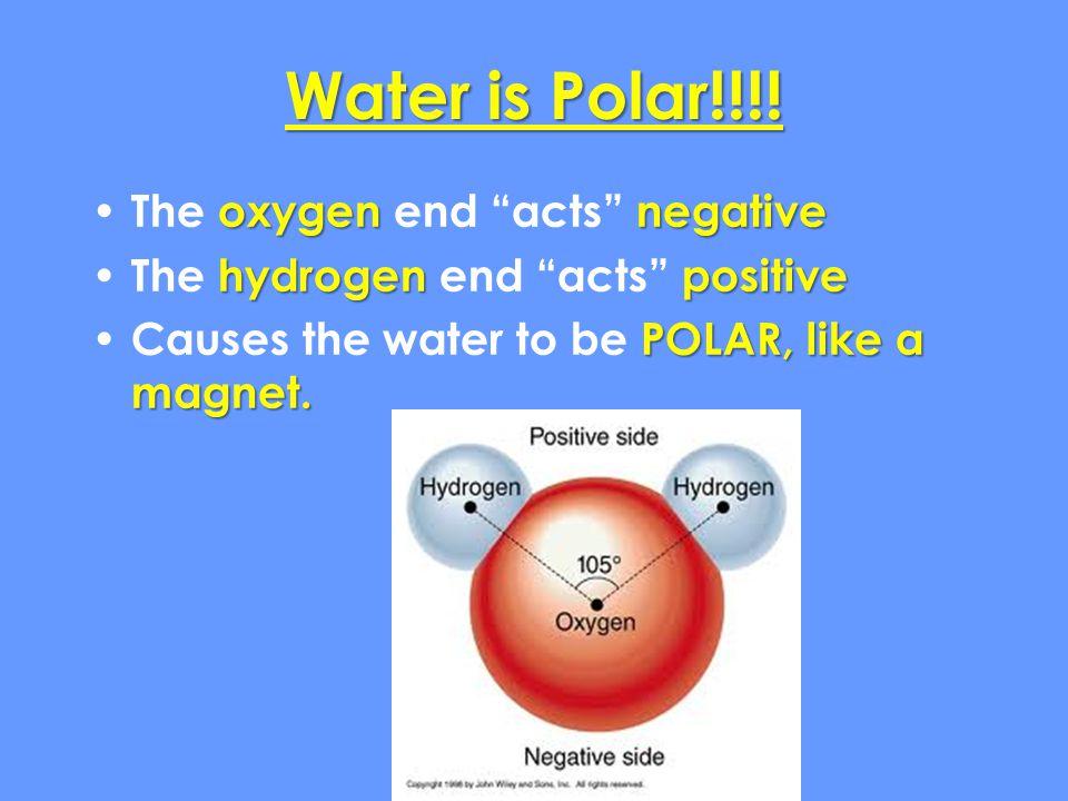 Water is Polar!!!.