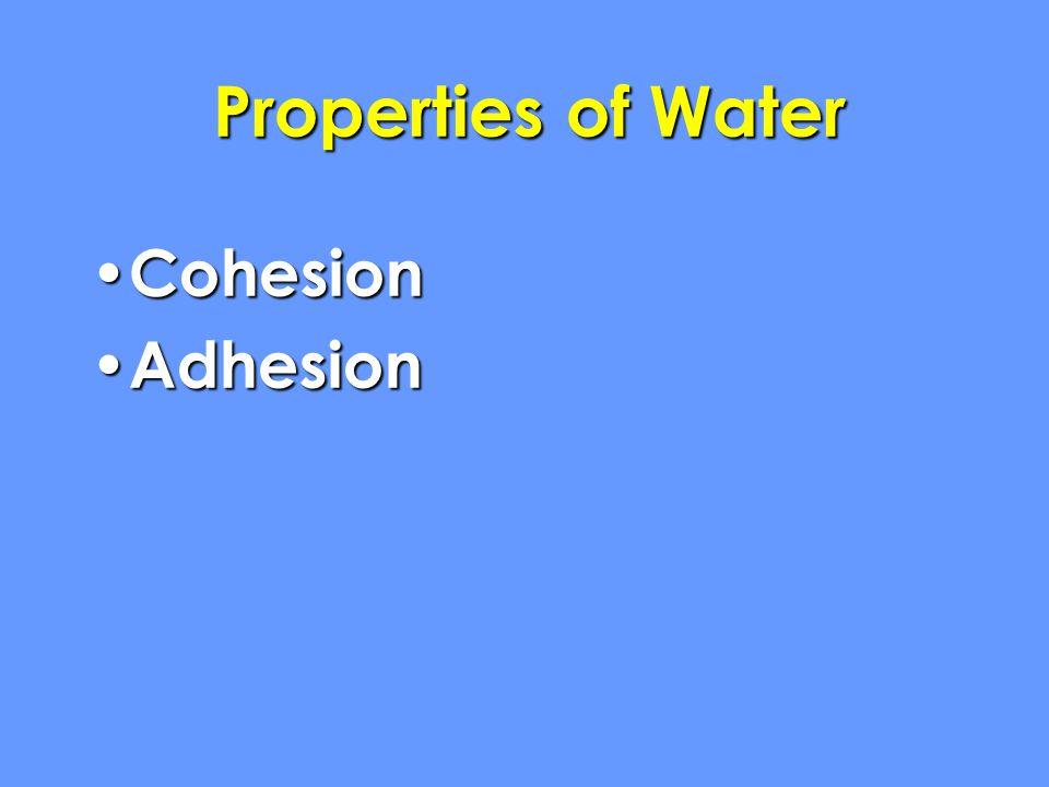 Properties of Water Cohesion Cohesion Adhesion Adhesion