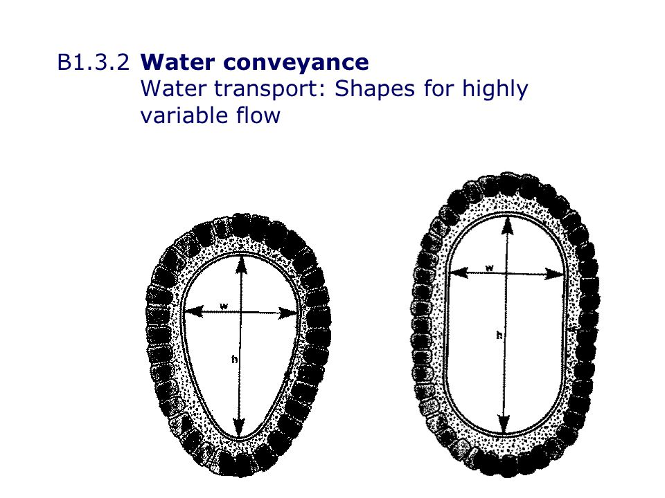 B1.3.2Water conveyance Water transport: Shapes for highly variable flow