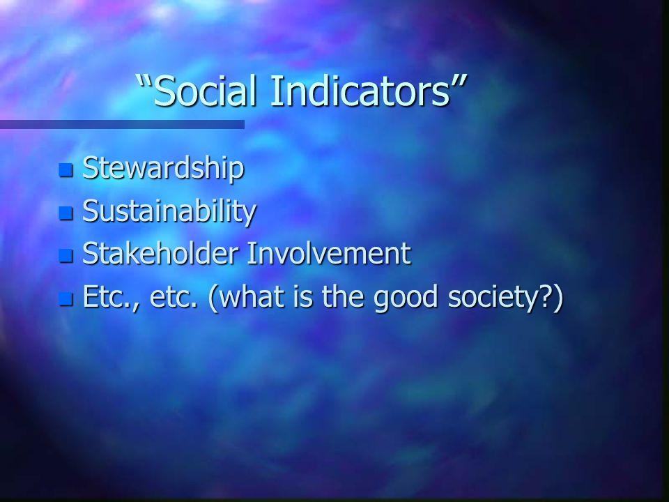 Social Indicators n Stewardship n Sustainability n Stakeholder Involvement n Etc., etc. (what is the good society?)