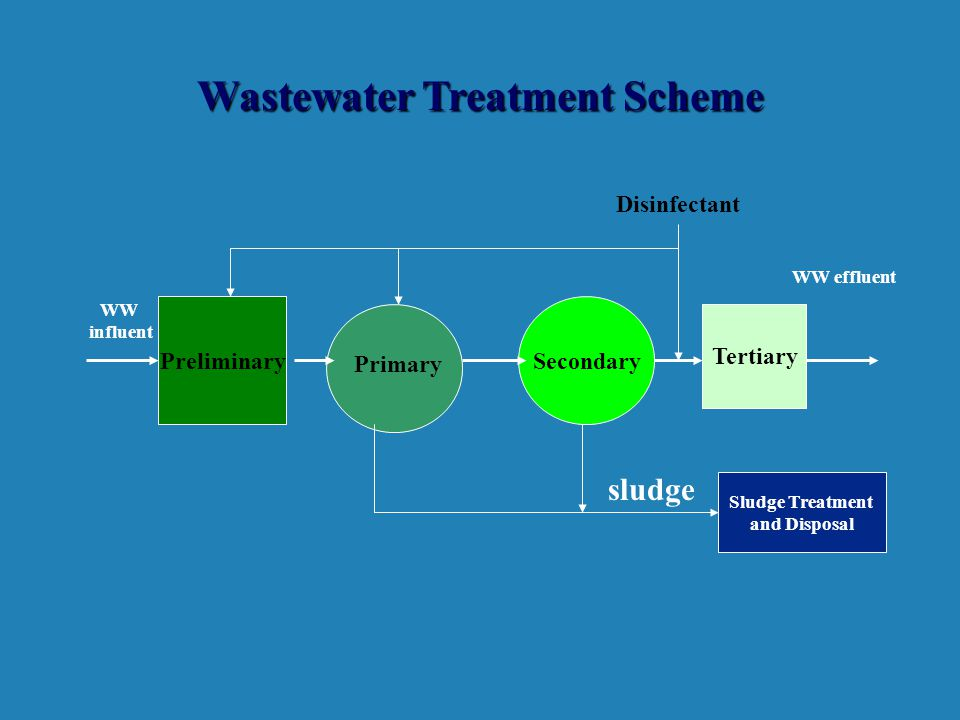 Wastewater Treatment Scheme PreliminarySecondary WW influent WW effluent sludge Primary Tertiary Disinfectant Sludge Treatment and Disposal