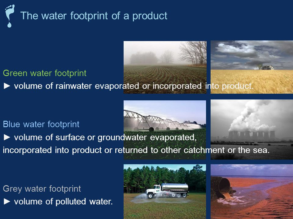 Green water footprint volume of rainwater evaporated or incorporated into product.