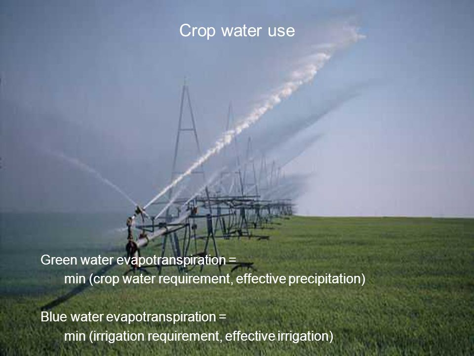 Crop water use Green water evapotranspiration = min (crop water requirement, effective precipitation) Blue water evapotranspiration = min (irrigation requirement, effective irrigation)