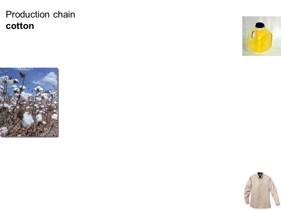 Production chain cotton