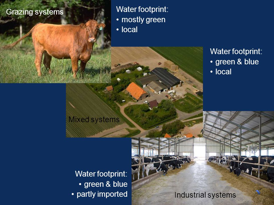 Industrial systems Mixed systems Grazing systems Water footprint: mostly green local Water footprint: green & blue partly imported Water footprint: green & blue local
