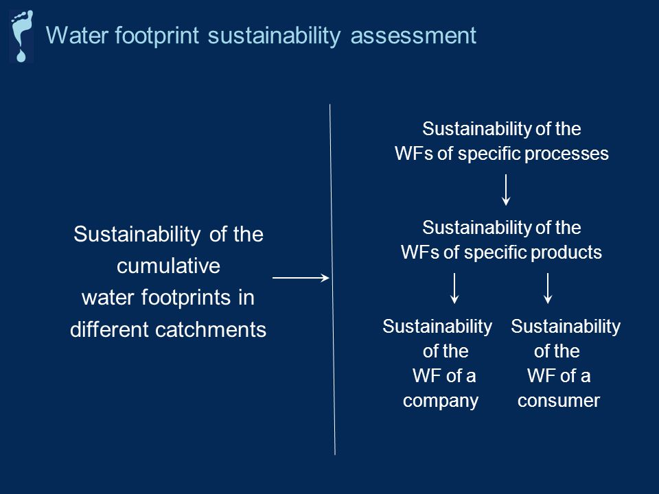 Water footprint sustainability assessment Sustainability of the cumulative water footprints in different catchments Sustainability of the WFs of specific processes Sustainability of the WFs of specific products Sustainability of the WF of a company consumer