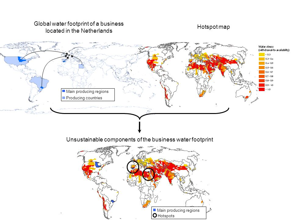 Main producing regions Producing countries Global water footprint of a business located in the Netherlands Hotspot map Main producing regions Hotspots Unsustainable components of the business water footprint
