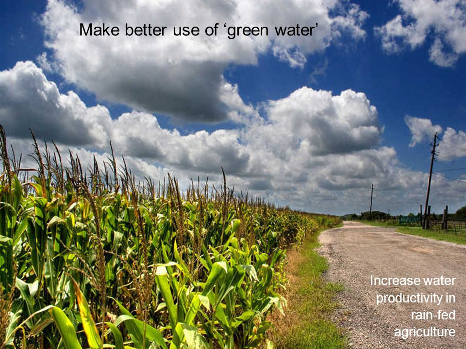 Increase water productivity in rain-fed agriculture Make better use of green water