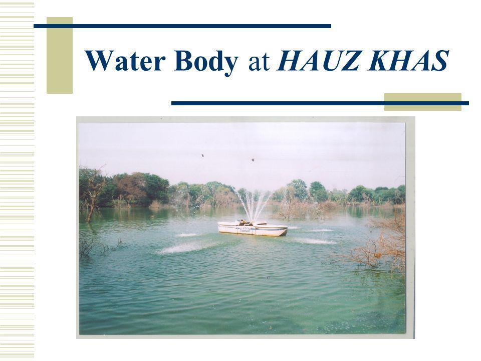 Serial No.as per petition : 1 (b) Name of the Water Body: Hauz Khas Khasra No.