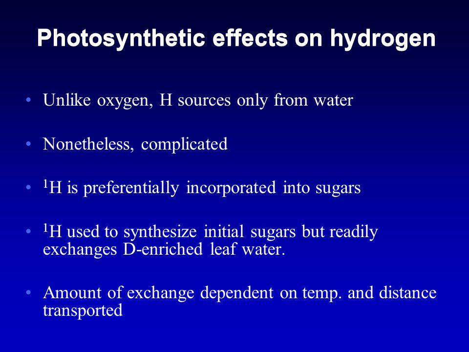 Photosynthetic effects on hydrogen Unlike oxygen, H sources only from water Nonetheless, complicated 1 H is preferentially incorporated into sugars 1 H used to synthesize initial sugars but readily exchanges D-enriched leaf water.