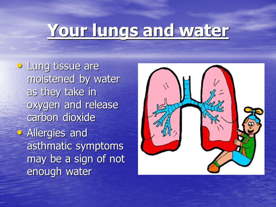 Your lungs and water Lung tissue are moistened by water as they take in oxygen and release carbon dioxide Lung tissue are moistened by water as they take in oxygen and release carbon dioxide Allergies and asthmatic symptoms may be a sign of not enough water Allergies and asthmatic symptoms may be a sign of not enough water