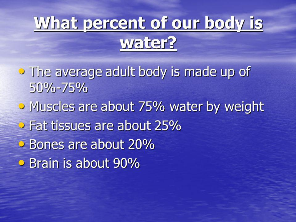 What percent of our body is water? The average adult body is made up of 50%-75% The average adult body is made up of 50%-75% Muscles are about 75% wat