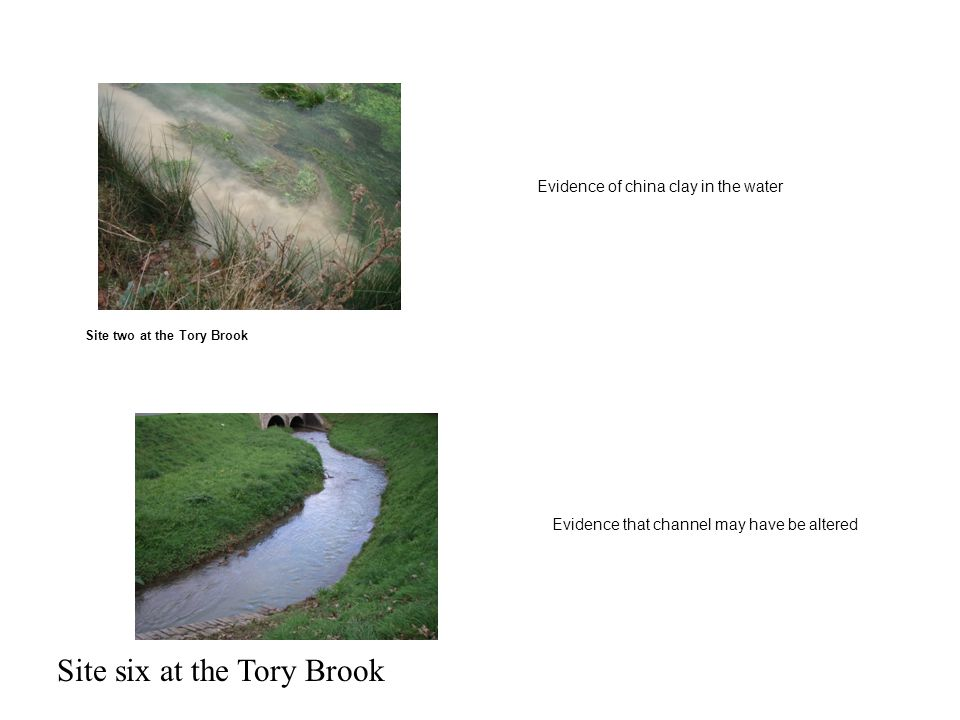 Site two at the Tory Brook Evidence of china clay in the water Evidence that channel may have be altered Site six at the Tory Brook