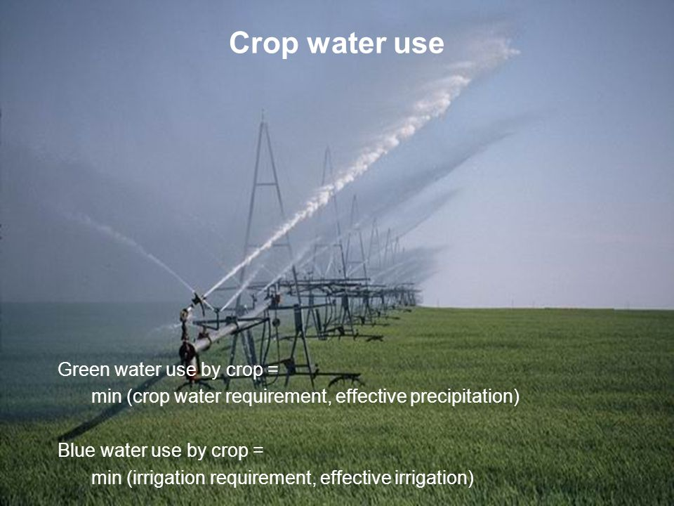 Crop water use Green water use by crop = min (crop water requirement, effective precipitation) Blue water use by crop = min (irrigation requirement, effective irrigation)