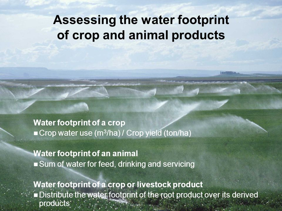 Reduction: all what is reasonably possible should have been done to reduce the existing water footprint; do not undertake water-using activities if better alternatives are available.