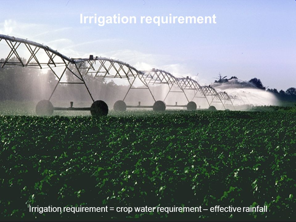 Irrigation requirement Irrigation requirement = crop water requirement – effective rainfall