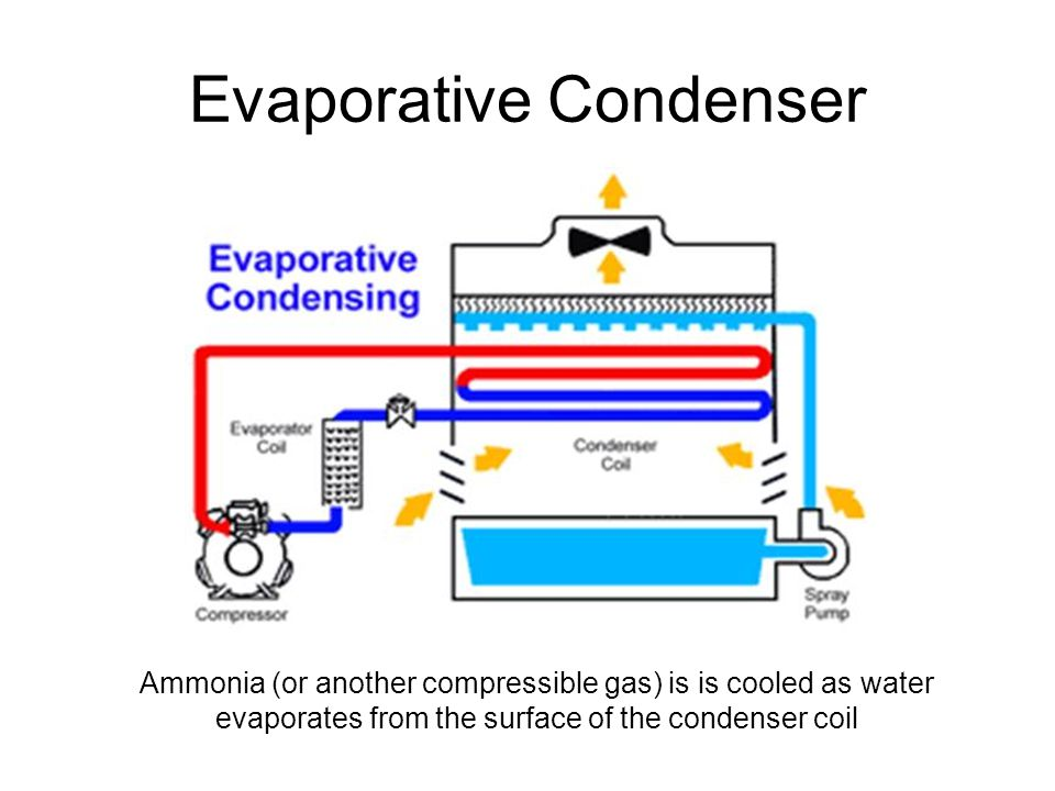 Evaporative Condenser Ammonia (or another compressible gas) is is cooled as water evaporates from the surface of the condenser coil