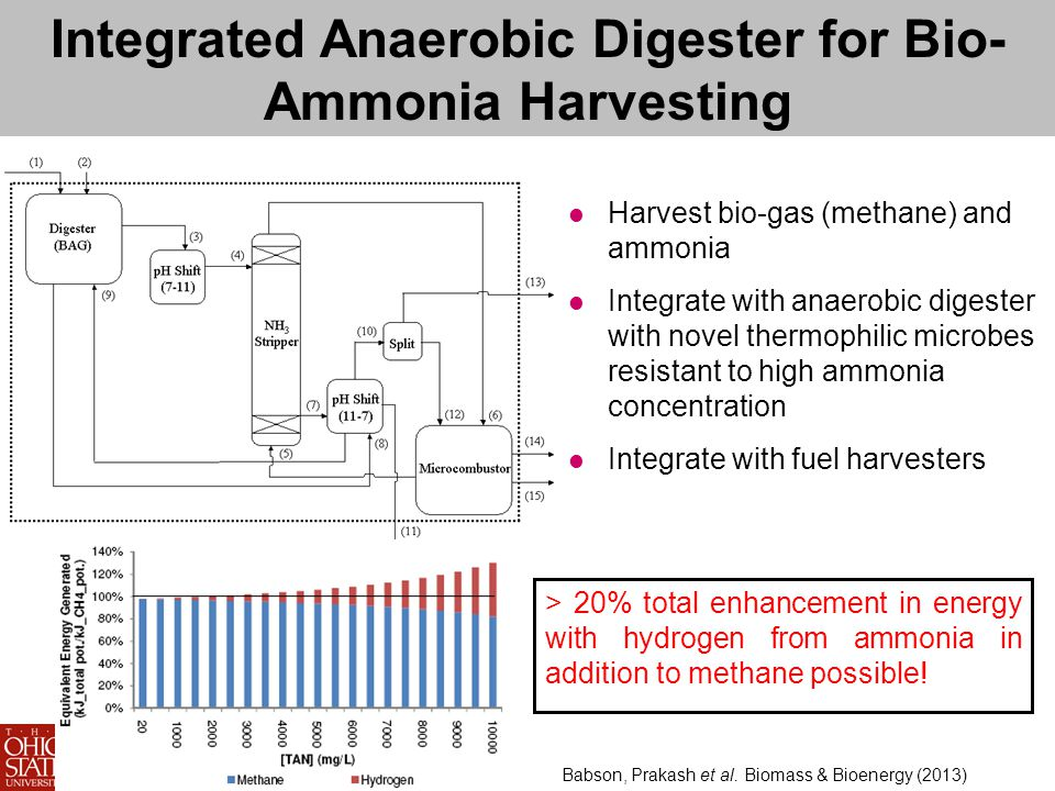 Integrated Anaerobic Digester for Bio- Ammonia Harvesting Harvest bio-gas (methane) and ammonia Integrate with anaerobic digester with novel thermophilic microbes resistant to high ammonia concentration Integrate with fuel harvesters > 20% total enhancement in energy with hydrogen from ammonia in addition to methane possible.