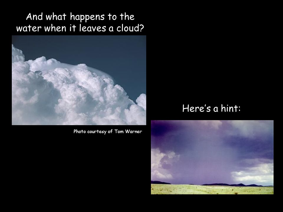 And what happens to the water when it leaves a cloud Heres a hint: Photo courtesy of Tom Warner
