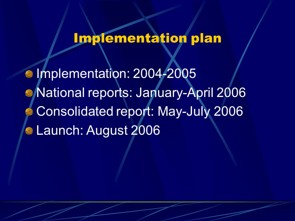 Implementation plan Implementation: 2004-2005 National reports: January-April 2006 Consolidated report: May-July 2006 Launch: August 2006