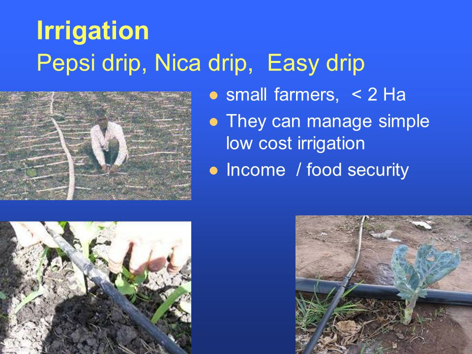 Irrigation Pepsi drip, Nica drip, Easy drip small farmers, < 2 Ha They can manage simple low cost irrigation Income / food security