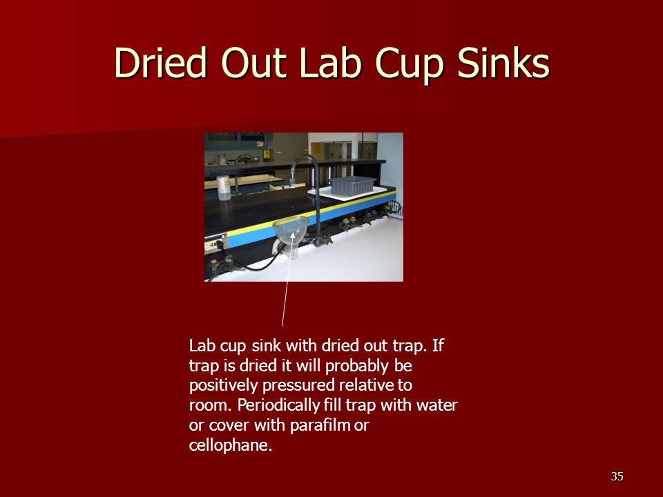 35 Dried Out Lab Cup Sinks Lab cup sink with dried out trap. If trap is dried it will probably be positively pressured relative to room. Periodically