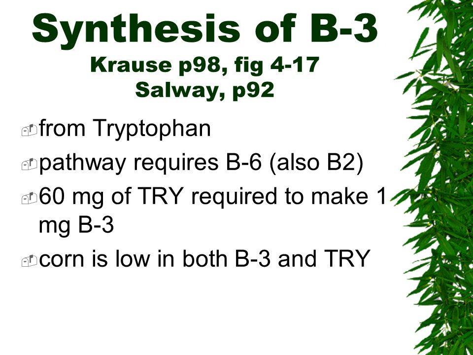 Synthesis of B-3 Krause p98, fig 4-17 Salway, p92 from Tryptophan pathway requires B-6 (also B2) 60 mg of TRY required to make 1 mg B-3 corn is low in both B-3 and TRY