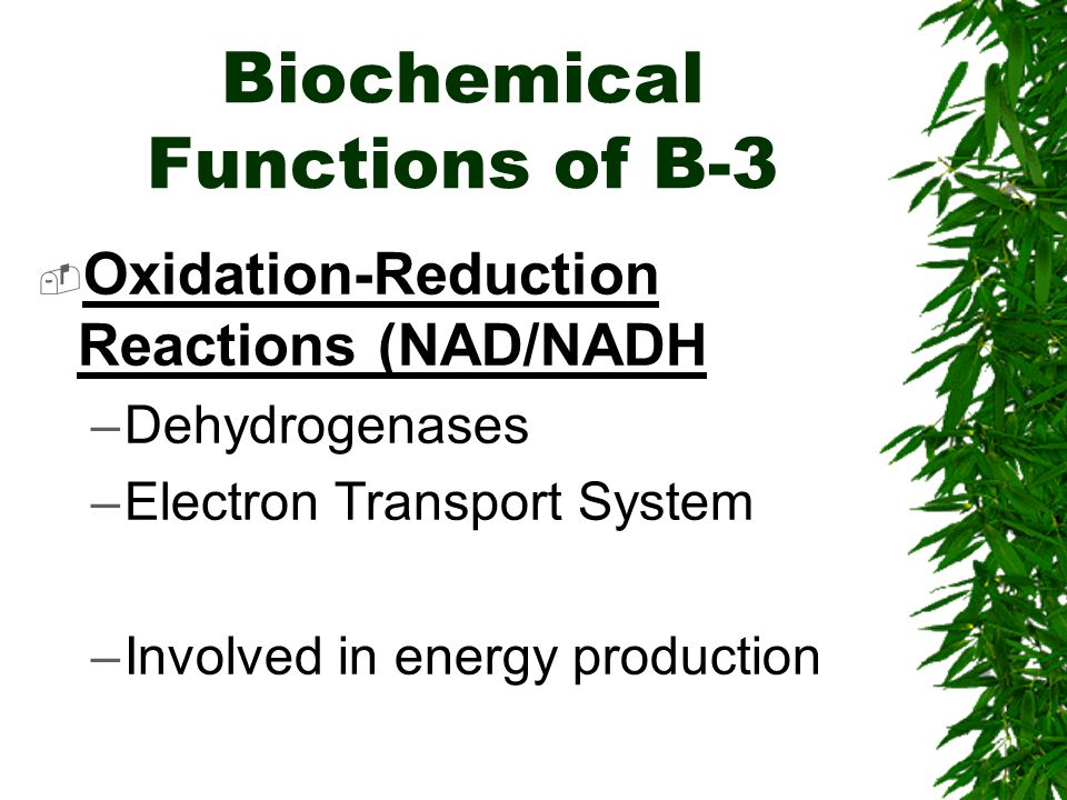 Biochemical Functions of B-3 Oxidation-Reduction Reactions (NAD/NADH –Dehydrogenases –Electron Transport System –Involved in energy production