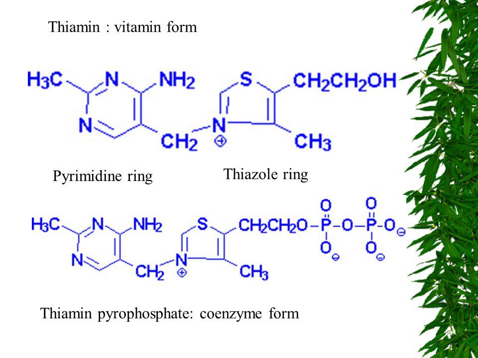 Thiamin : vitamin form Thiamin pyrophosphate: coenzyme form Pyrimidine ring Thiazole ring