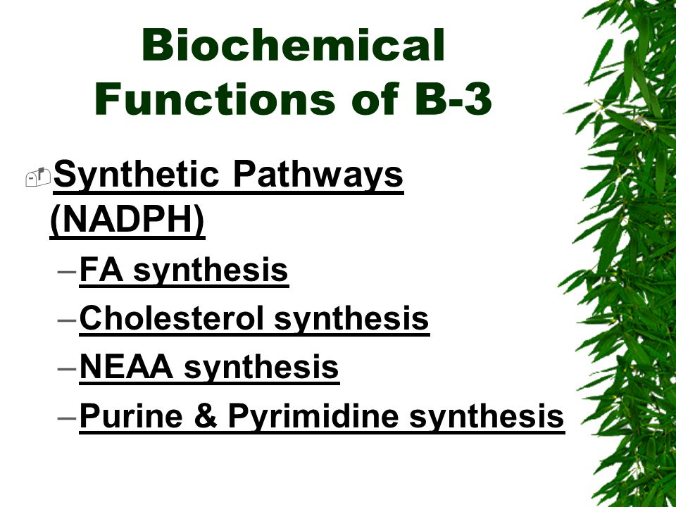 Biochemical Functions of B-3 Synthetic Pathways (NADPH) –FA synthesis –Cholesterol synthesis –NEAA synthesis –Purine & Pyrimidine synthesis