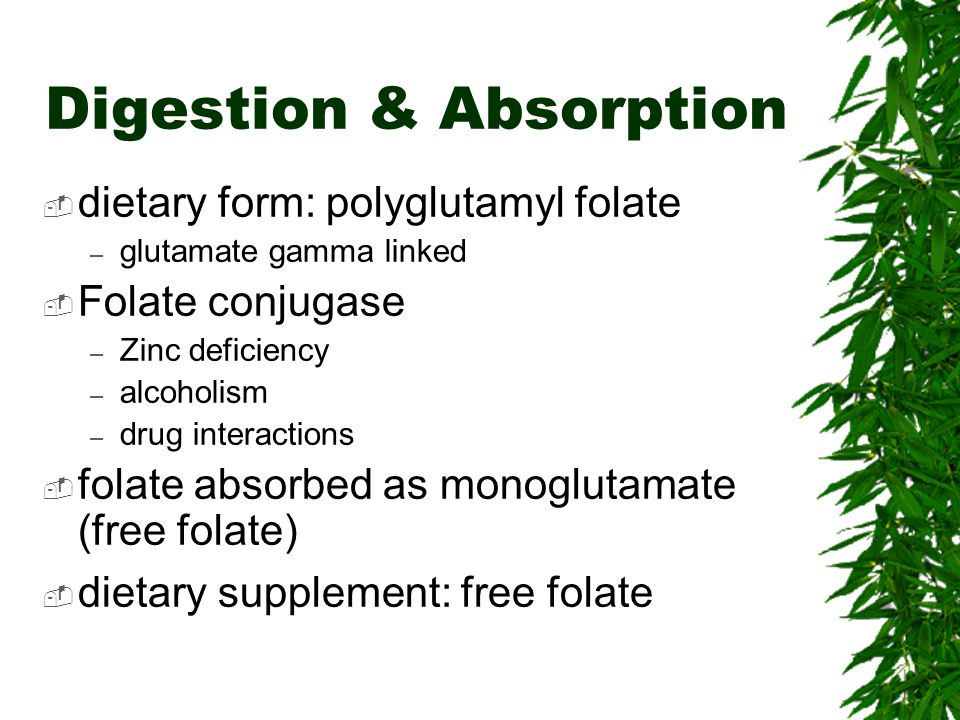Digestion & Absorption dietary form: polyglutamyl folate – glutamate gamma linked Folate conjugase – Zinc deficiency – alcoholism – drug interactions folate absorbed as monoglutamate (free folate) dietary supplement: free folate