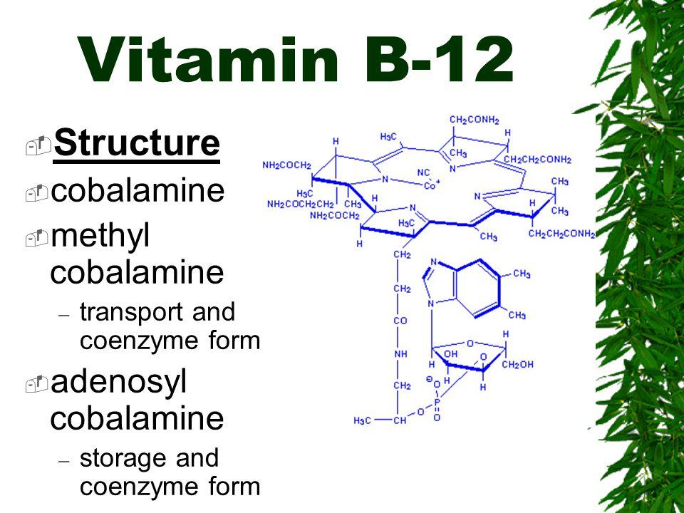 Vitamin B-12 Structure cobalamine methyl cobalamine – transport and coenzyme form adenosyl cobalamine – storage and coenzyme form