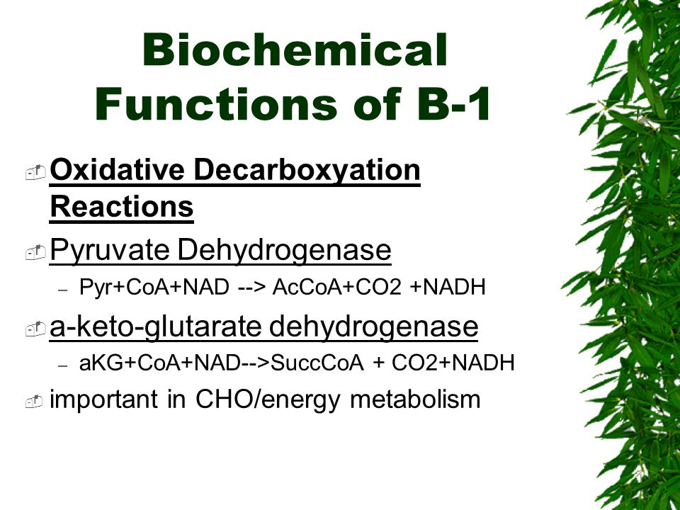 Biochemical Functions of B-1 Oxidative Decarboxyation Reactions Pyruvate Dehydrogenase – Pyr+CoA+NAD --> AcCoA+CO2 +NADH a-keto-glutarate dehydrogenase – aKG+CoA+NAD-->SuccCoA + CO2+NADH important in CHO/energy metabolism